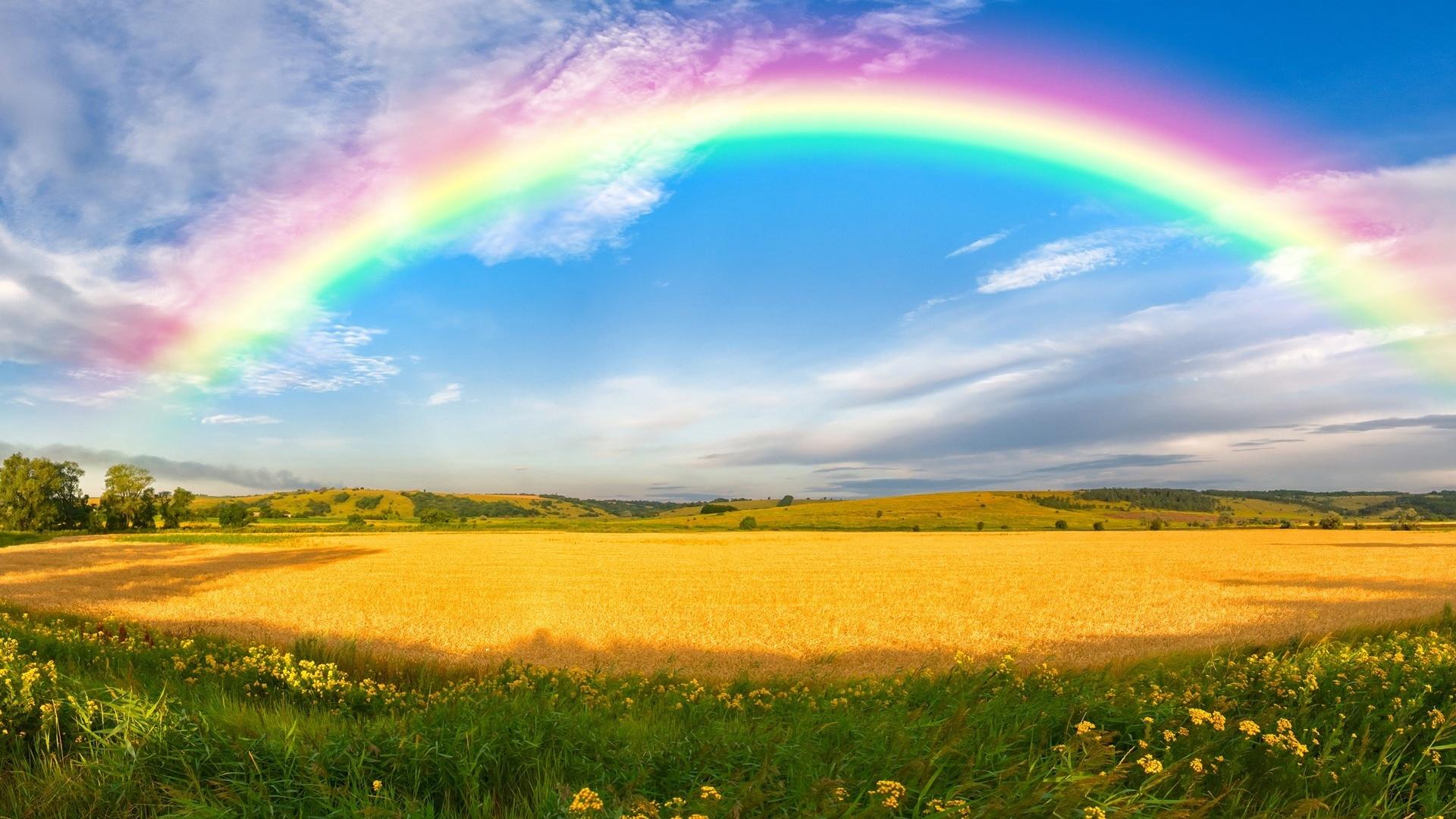 Днем, картинки с радугой и солнцем