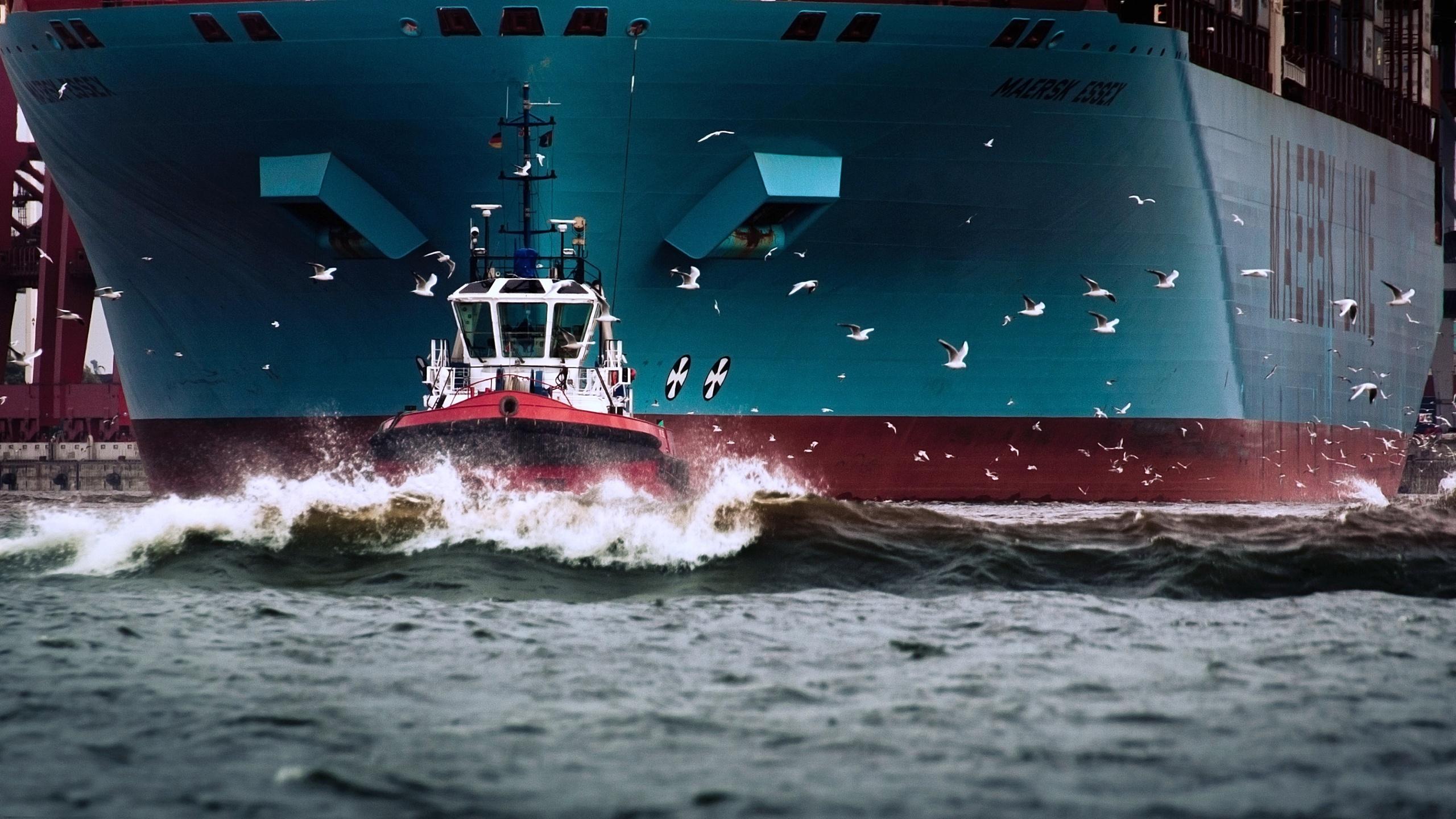 фото морских судов и кораблей что торжественная церемония