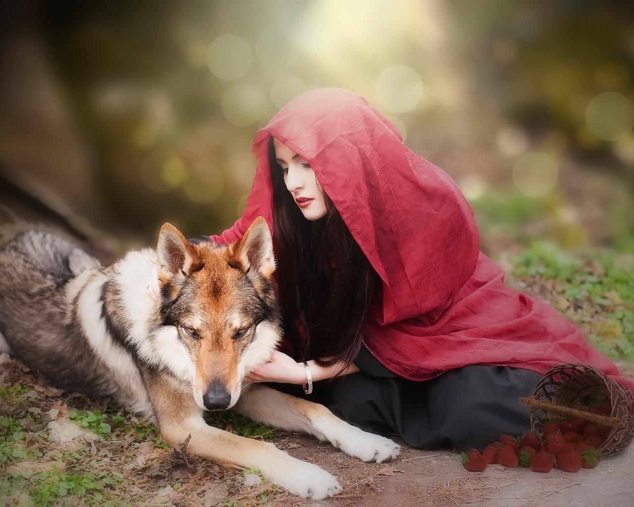 девушка, волк, образ, креатив, красная шапочка