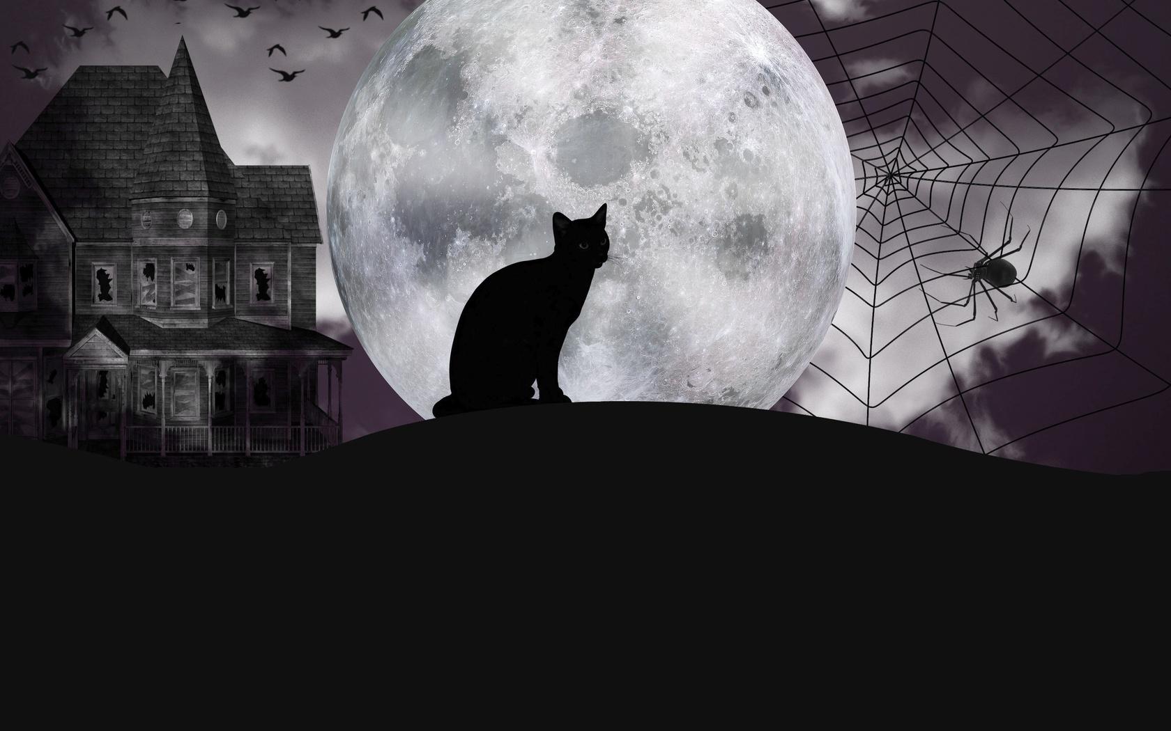 кошка, силуэт, паук, замок, луна, монохромная