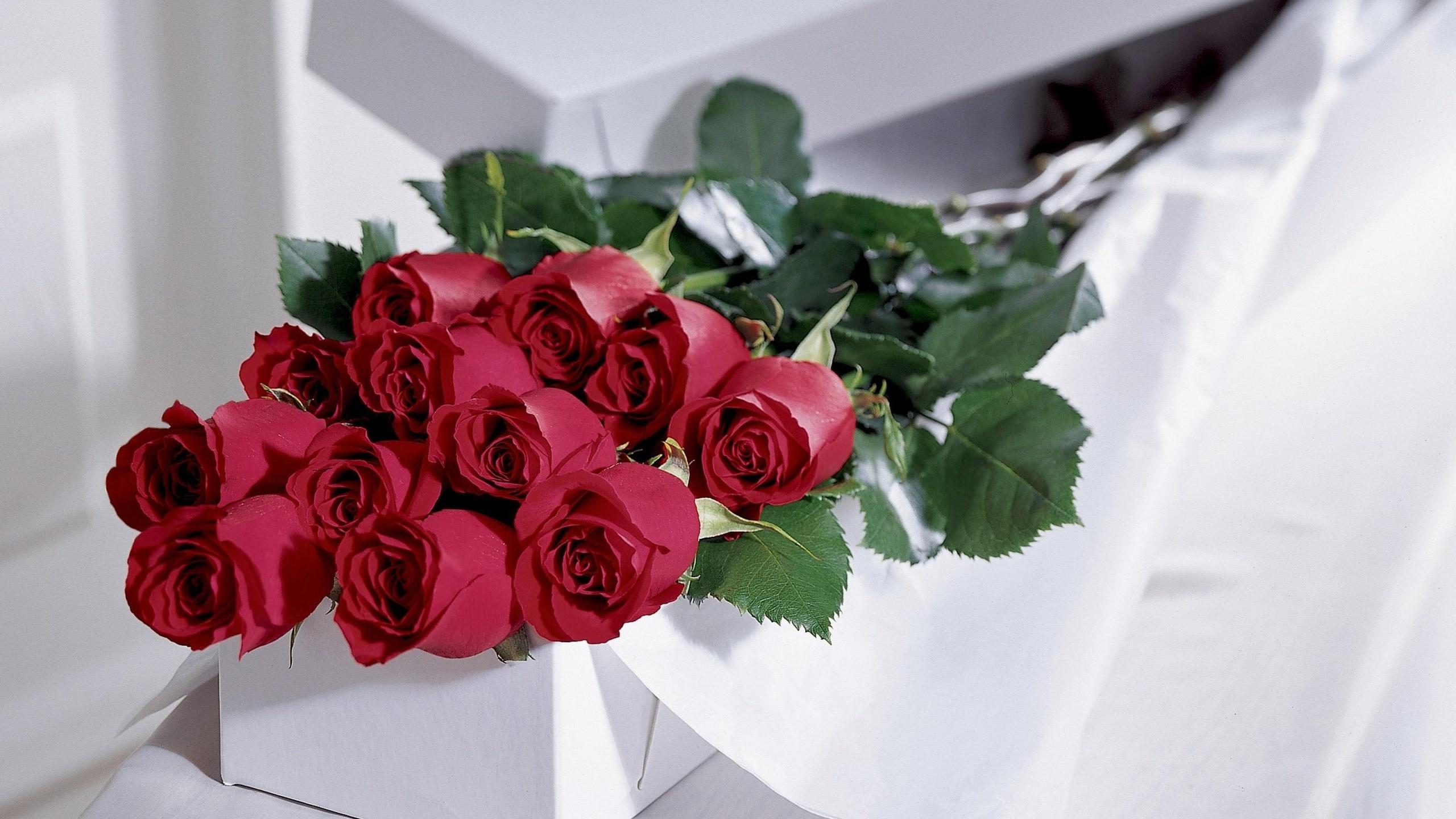 Невесты омск, сон подарок букет роз