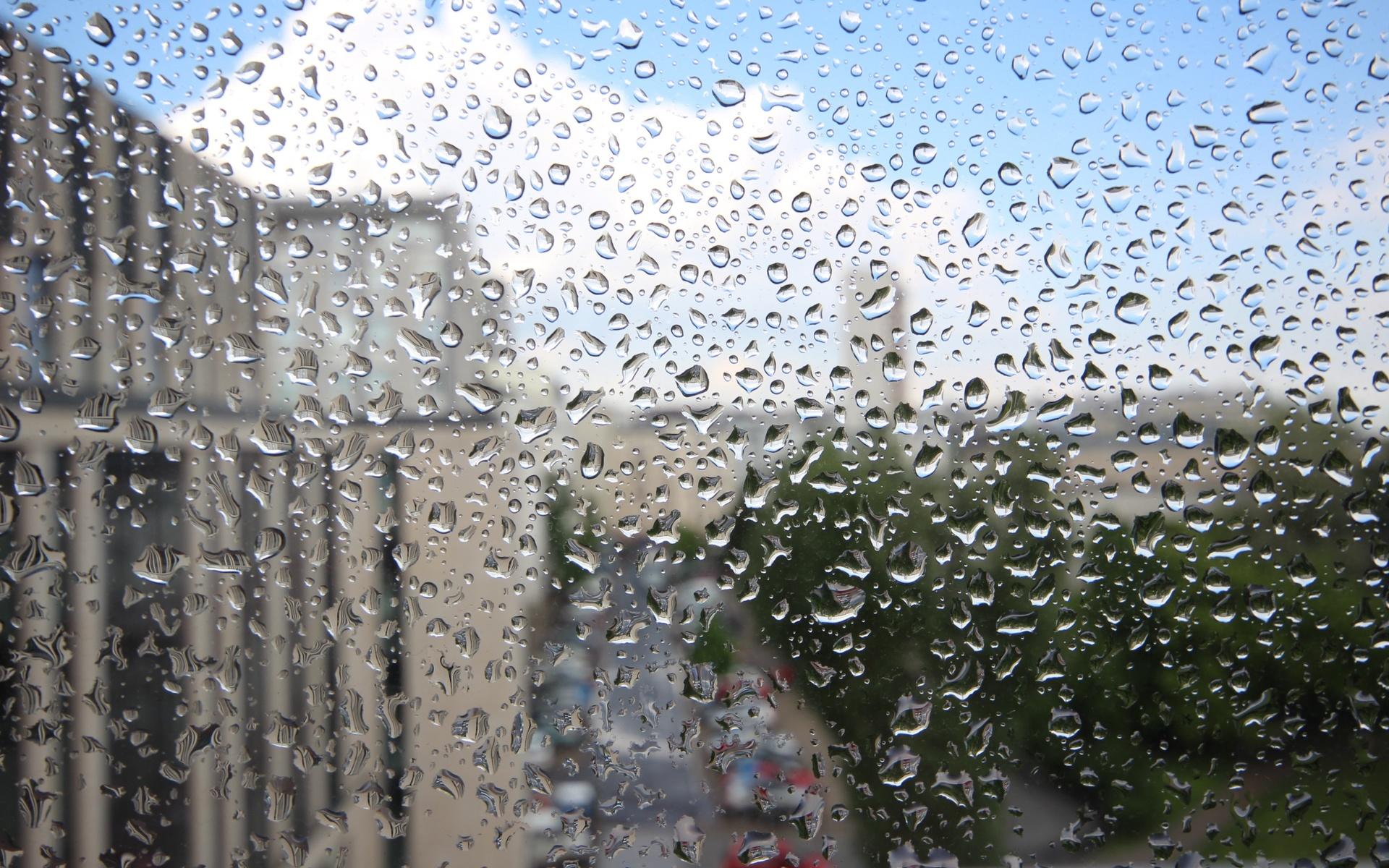 Картинка анимация дождь стекло, днем рождения
