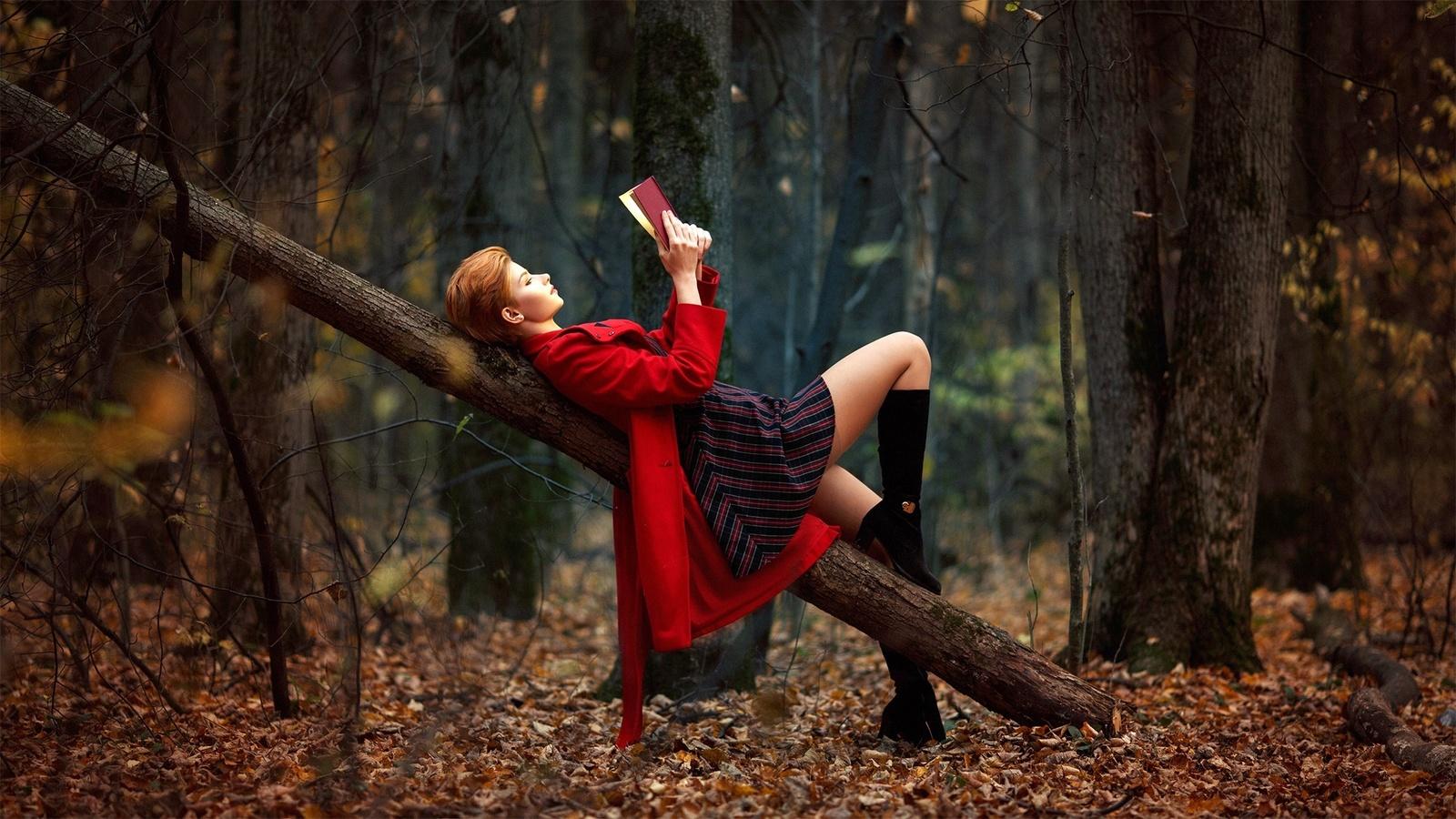 anastasia zhilina, лес, осень, красиво, образ