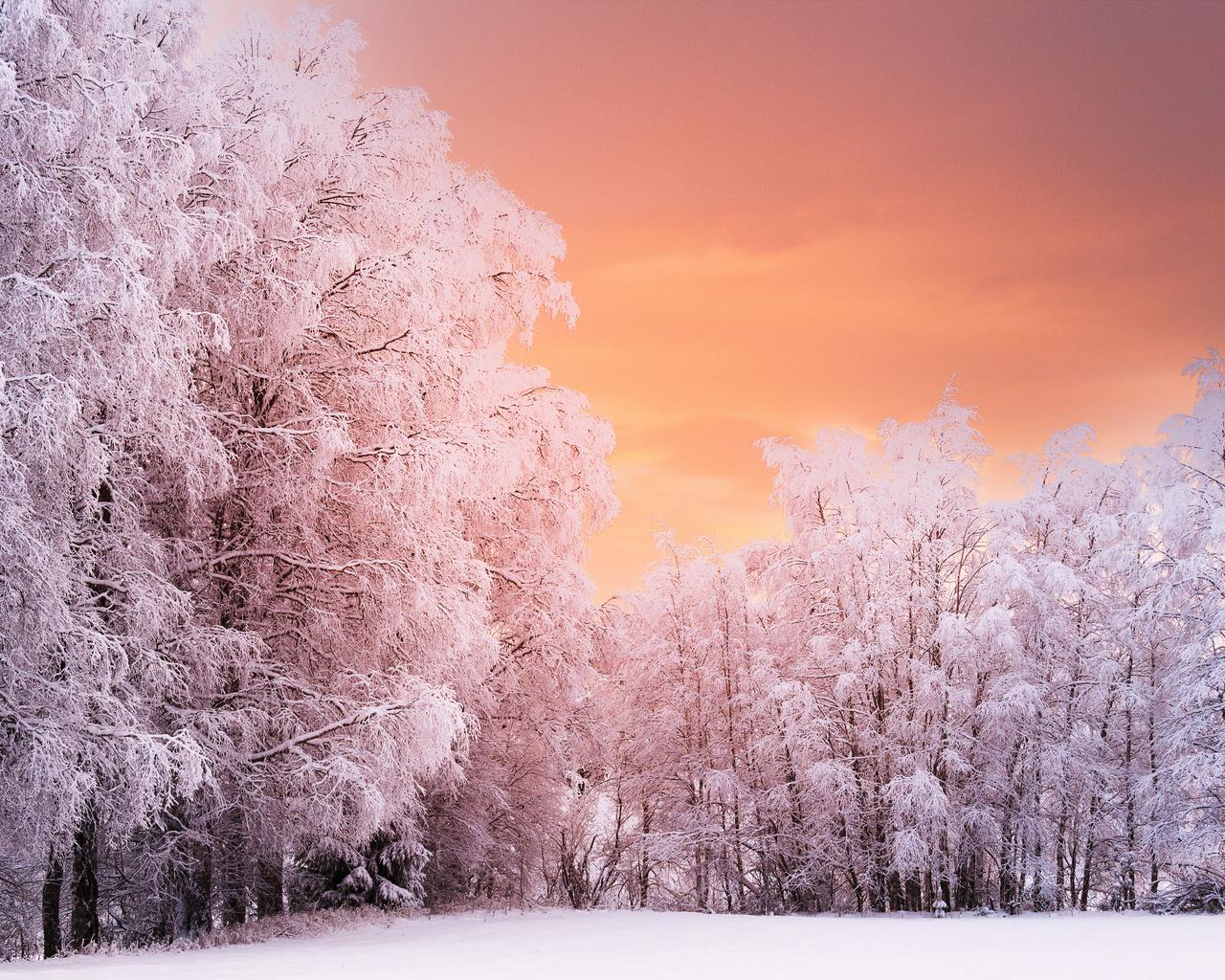 зима, снег, природа