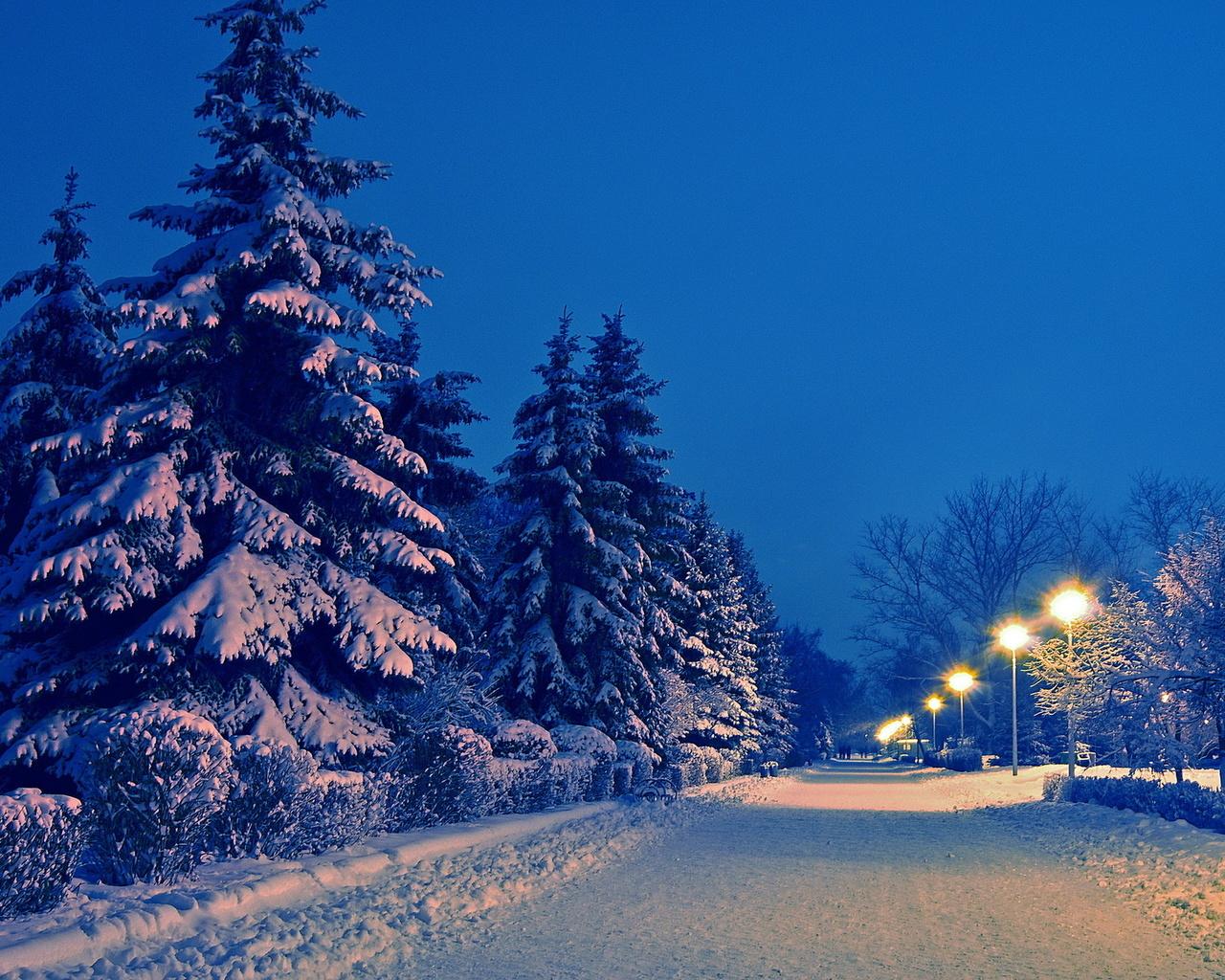 природа, зима, дорога, снег, пейзаж, парк, вечер, деревья ели, фонари, аллея, деревья, ели