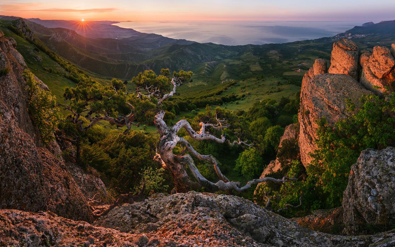 закат, горы, пейзаж, деревья, природа