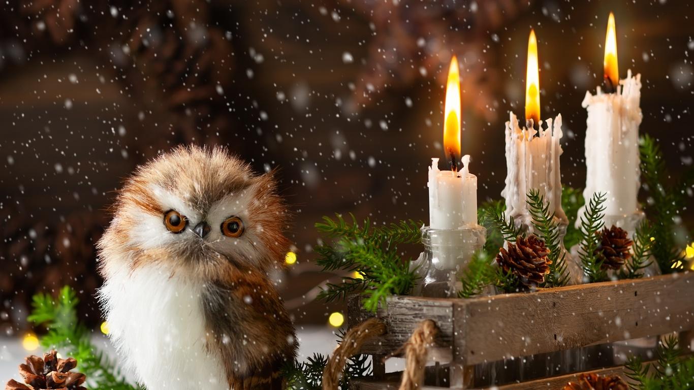праздник, новый год, рождество, ящик, свечи, шишки, игрушка, птица, совёнок, ветки, ёлка, хвоя, композиция, снег