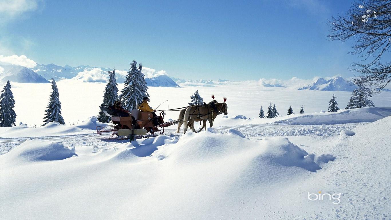 природа, пейзаж, снег, зима, деревья, ёлочки, сугробы, люди, лошади, bing