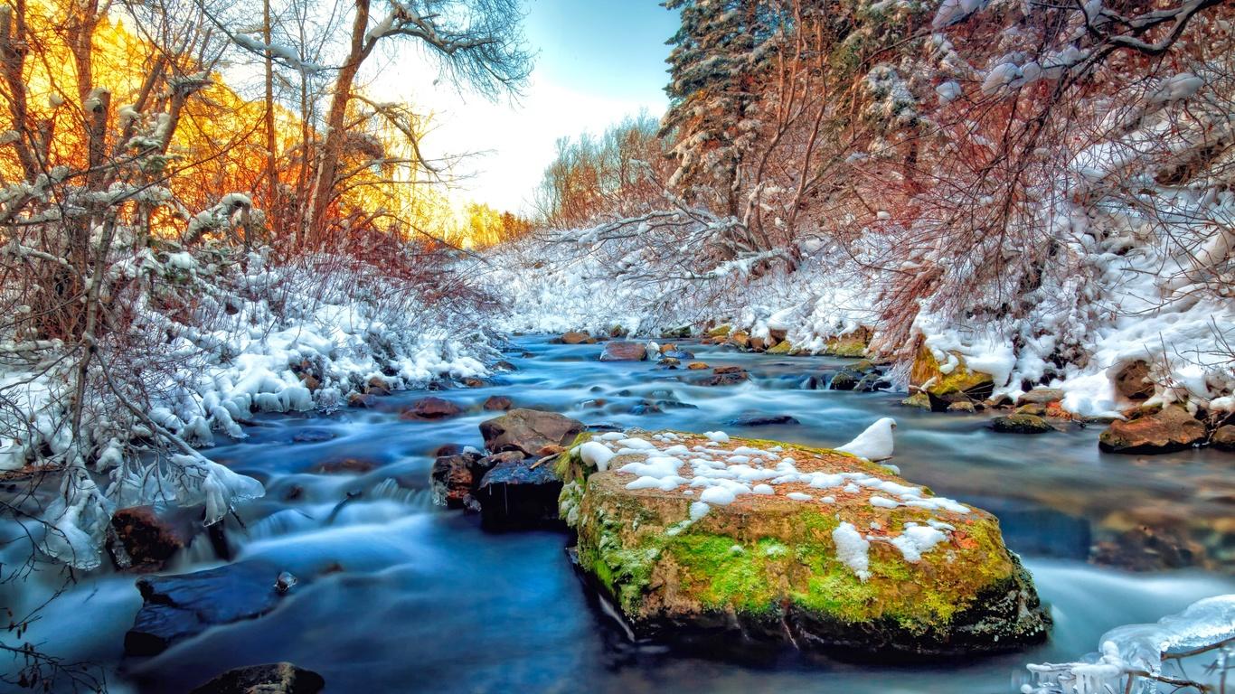 камни, мох, трава, деревья, снег