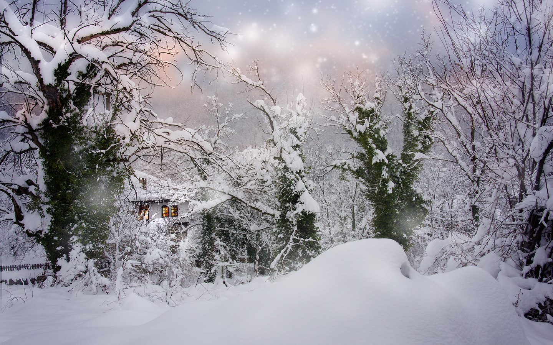 зима, снег, деревья, пейзаж, природа, дом, сугробы, снегопад, болгария, albena markova