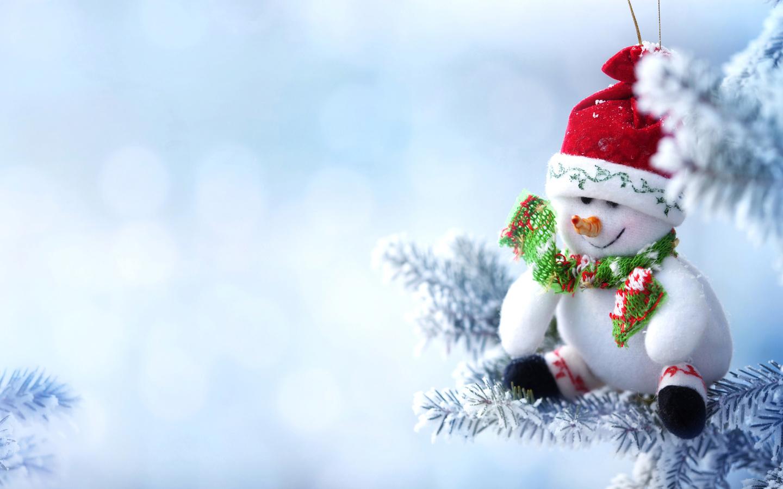 праздник, новый год, рождество, ветки, ель, ёлка, снег, игрушка, снеговик