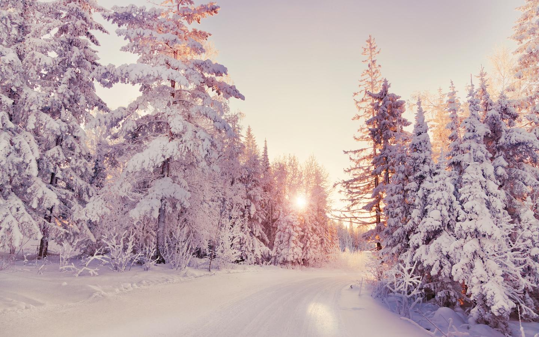 зима, снег, природа, вечер