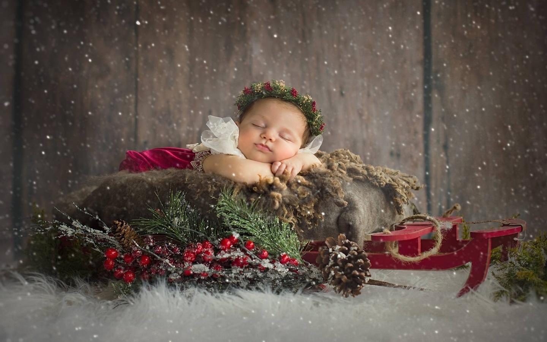 ребёнок, младенец, снег, ветки, ягоды, сон, рождество, девочка, санки, венок, шишки, малышка