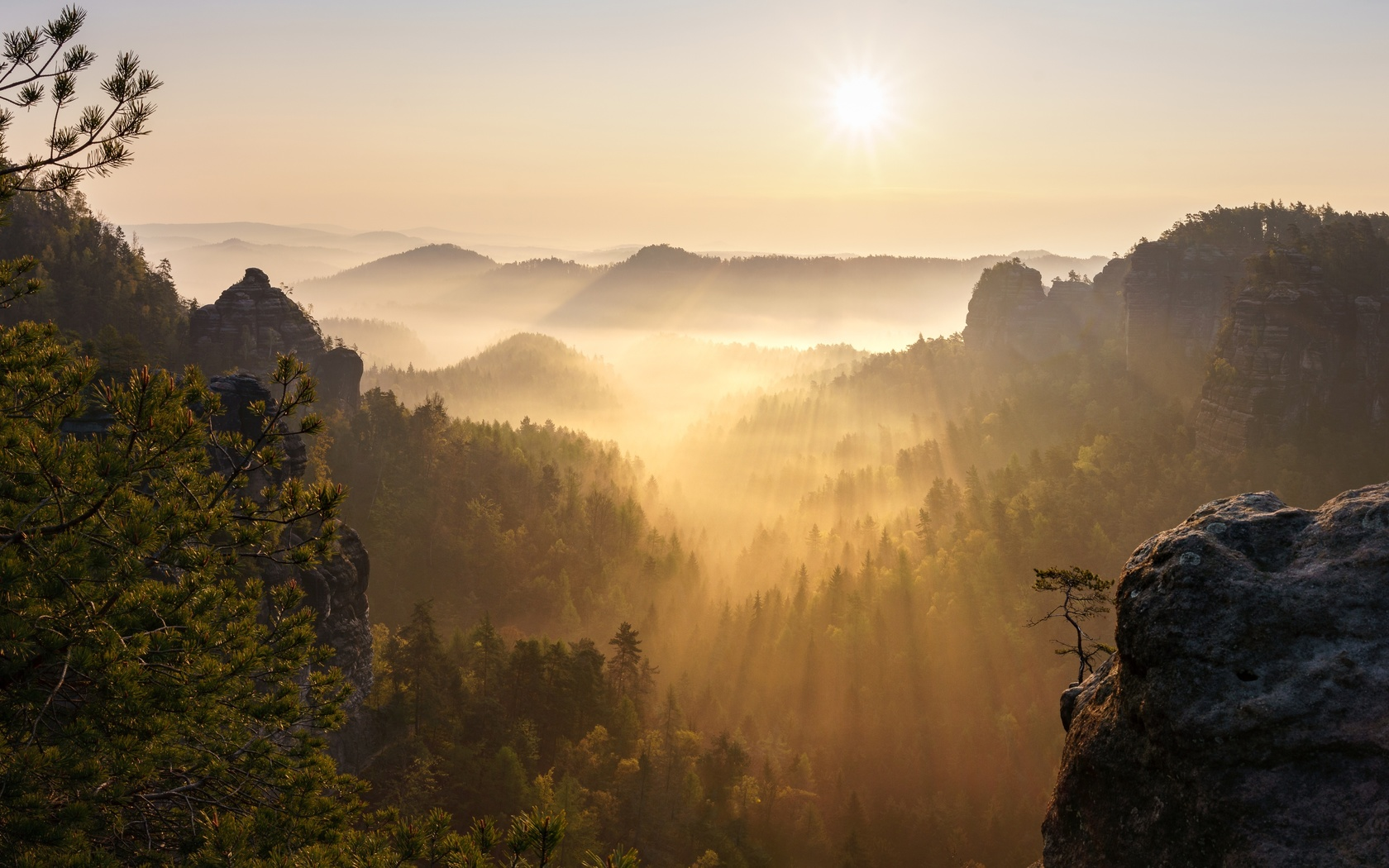 лес, небо, солнце, лучи, свет, пейзаж, горы, ветки, природа, туман, скала, настроение, рассвет, холмы, высота, даль