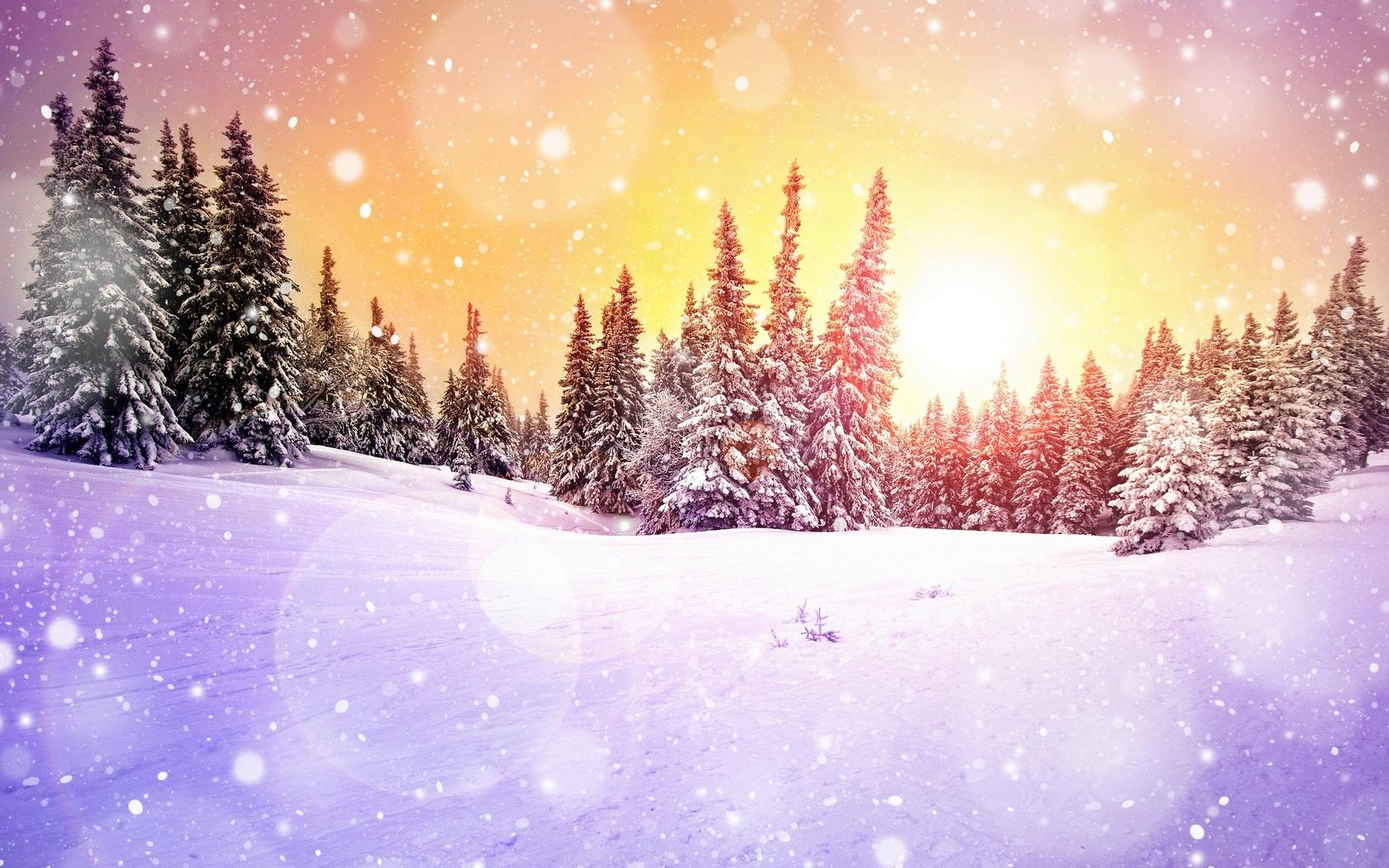 природа, пейзаж, зима, снег, деревья, ели, снегопад, боке