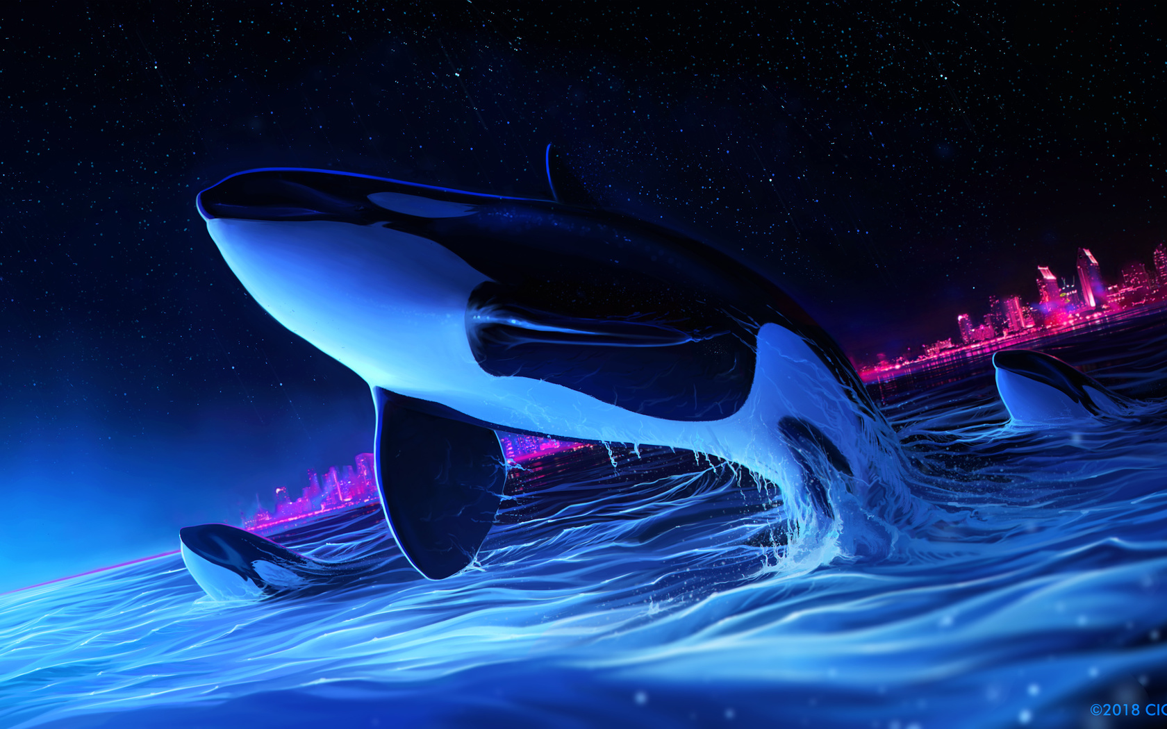 dolphin, night, orca, whale, digital art