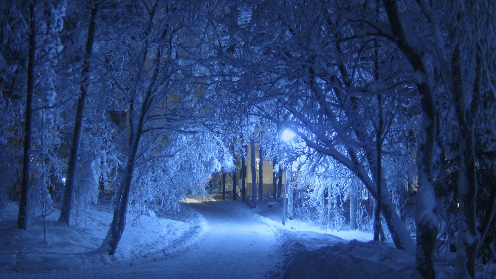 парк, дорожка, огни, ночь, зима