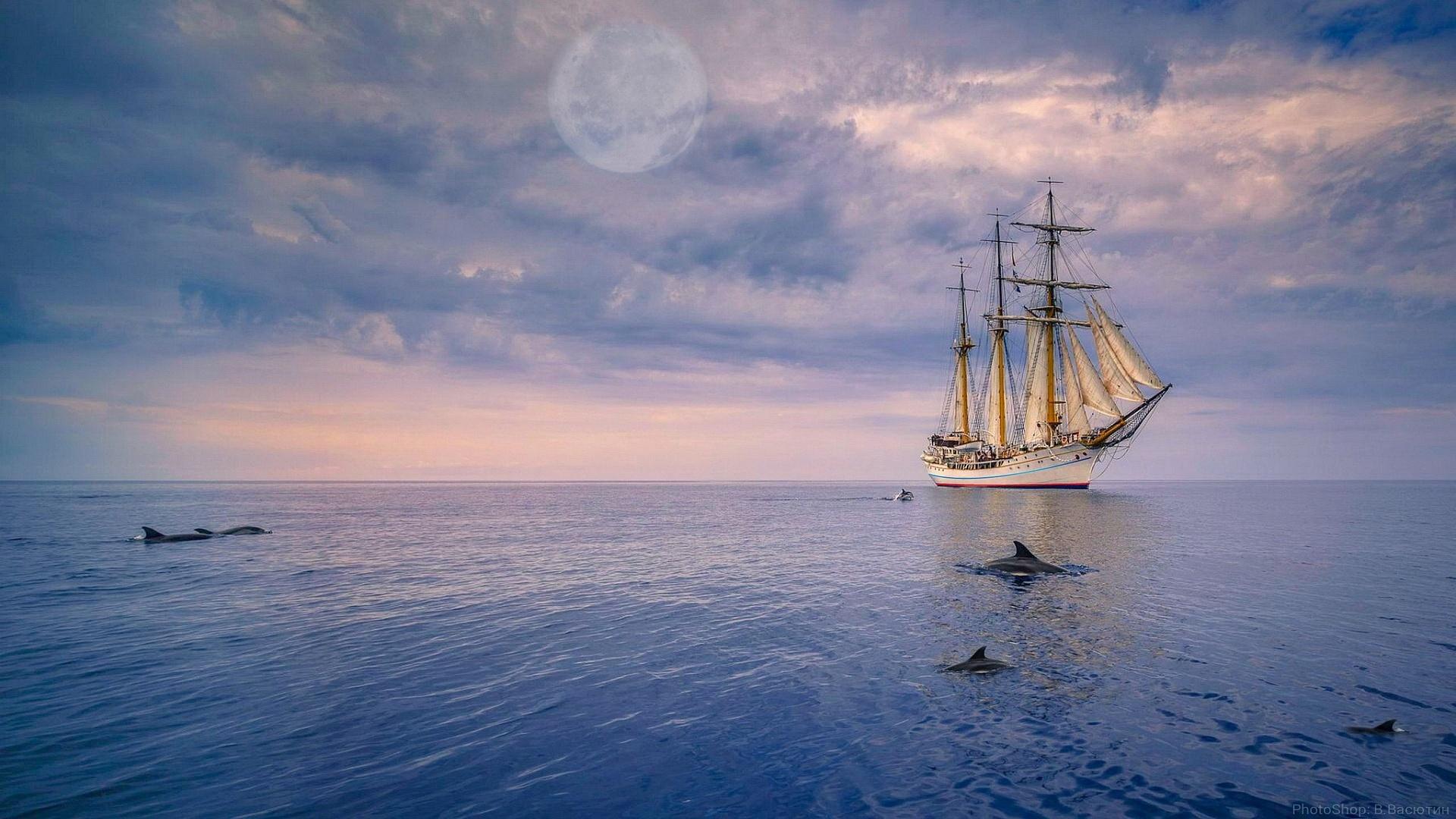океан, дельфины, парусник, небо