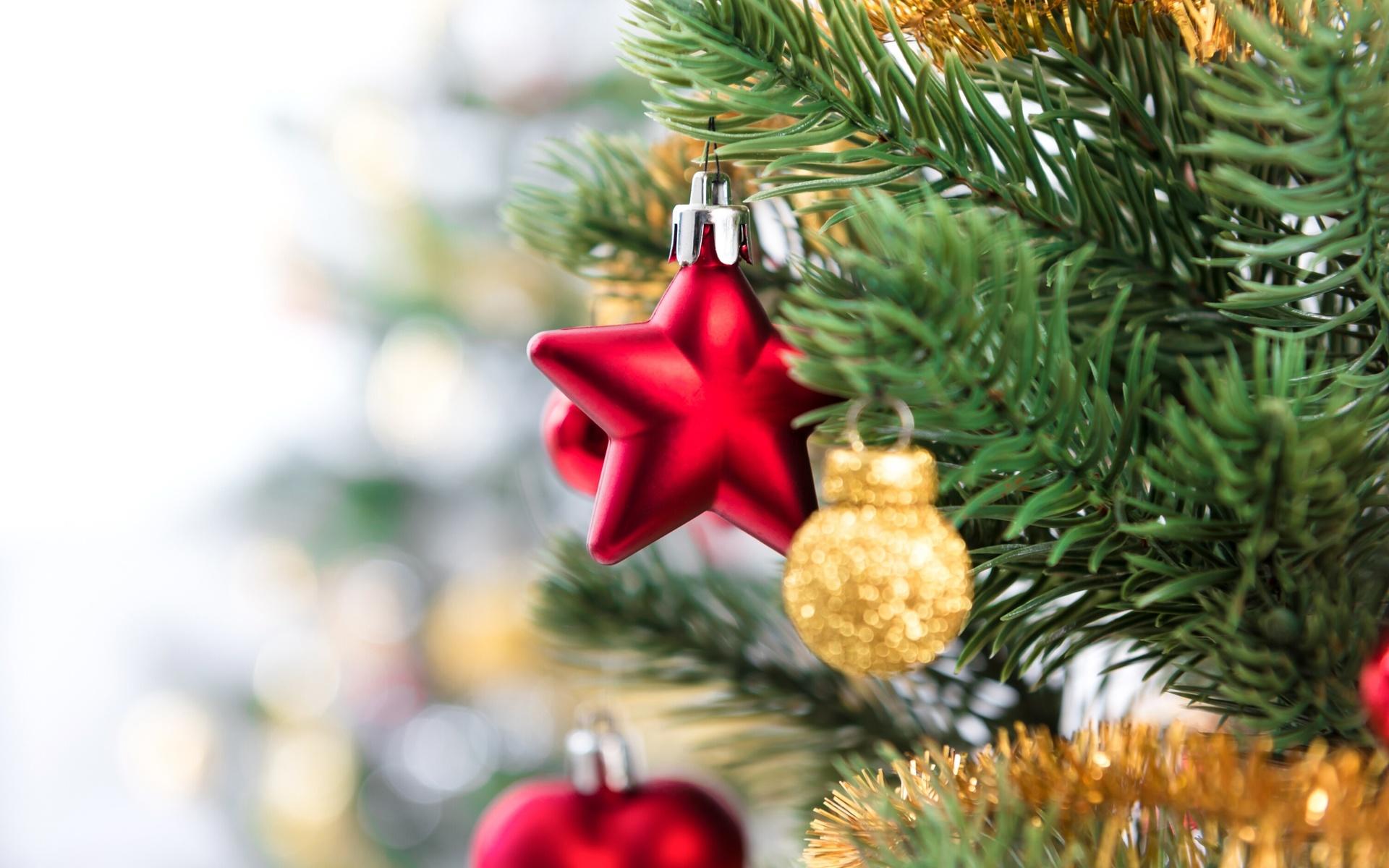 праздник, новый год, рождество, ёлка, ветки, хвоя, украшения, мишура, игрушки