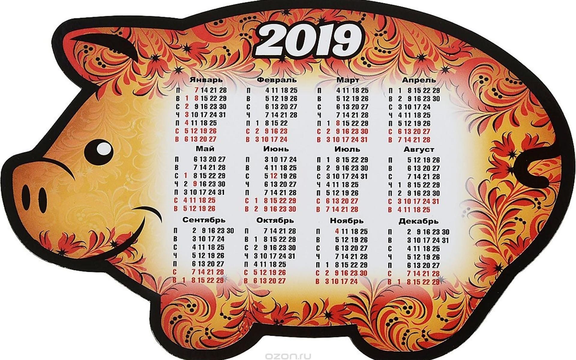 свинка, календарь, 2019