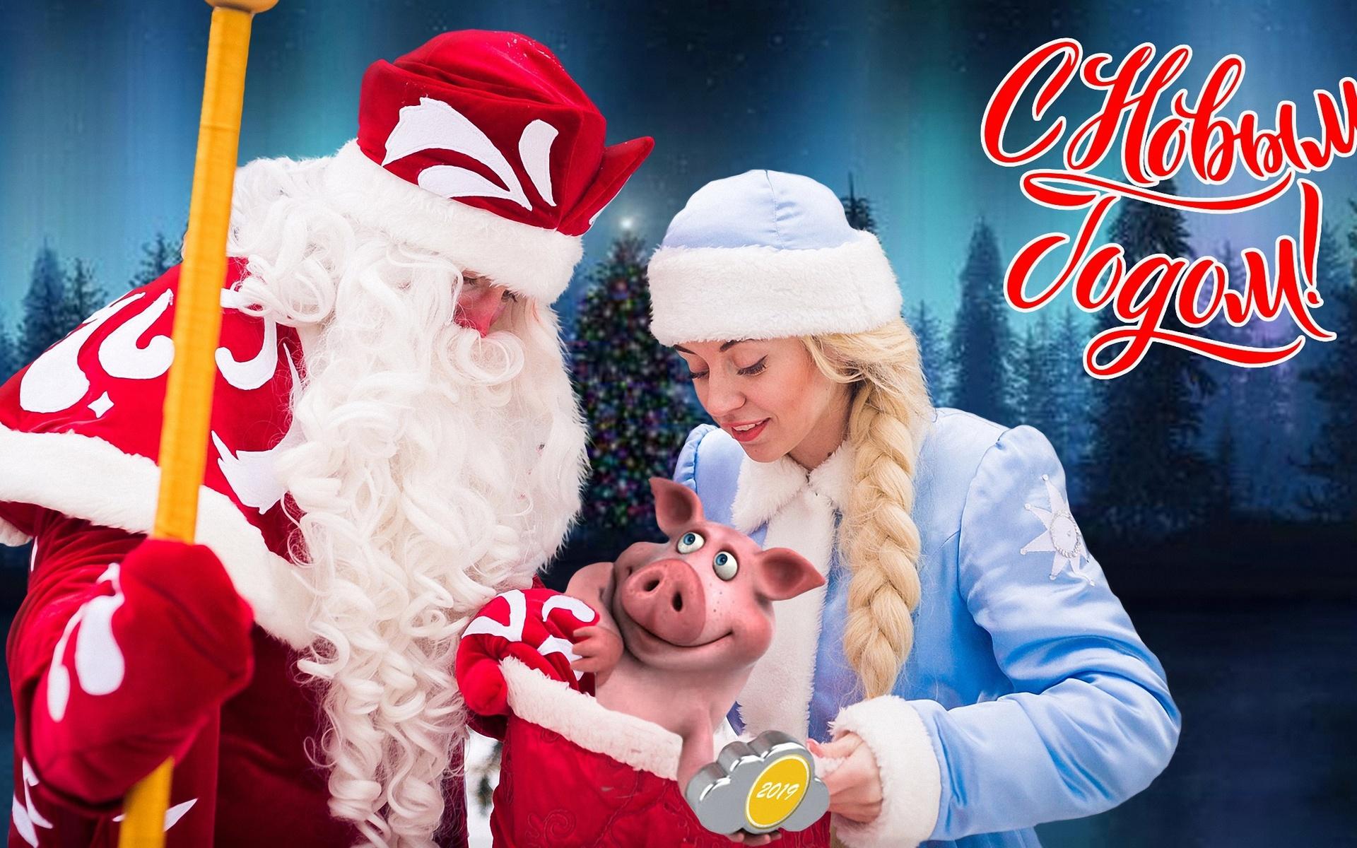 с новым, годом, зима, дед мороз, снегурочка, свинья, 2019,новый год, праздник, иллюстрация