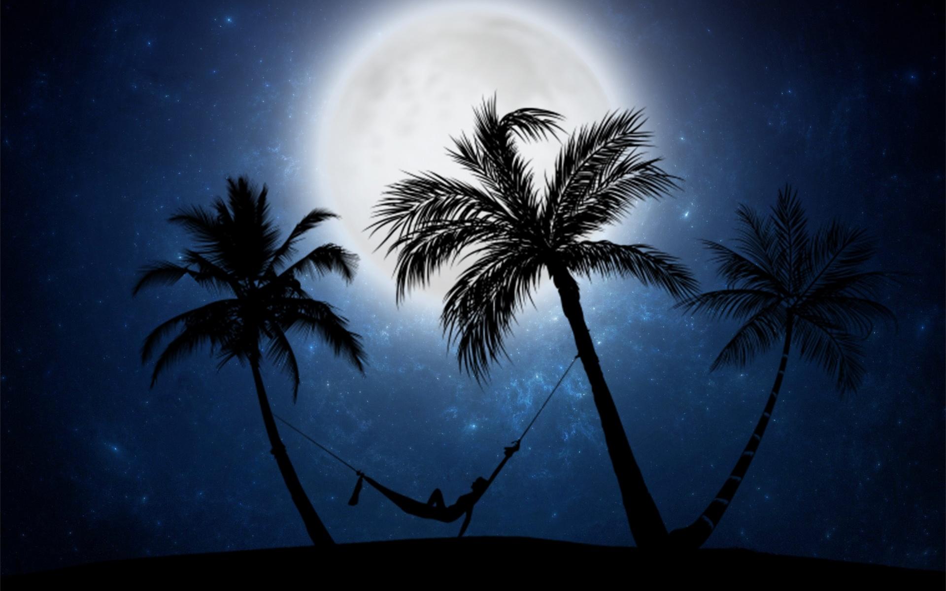 луна, пальмы, ночь
