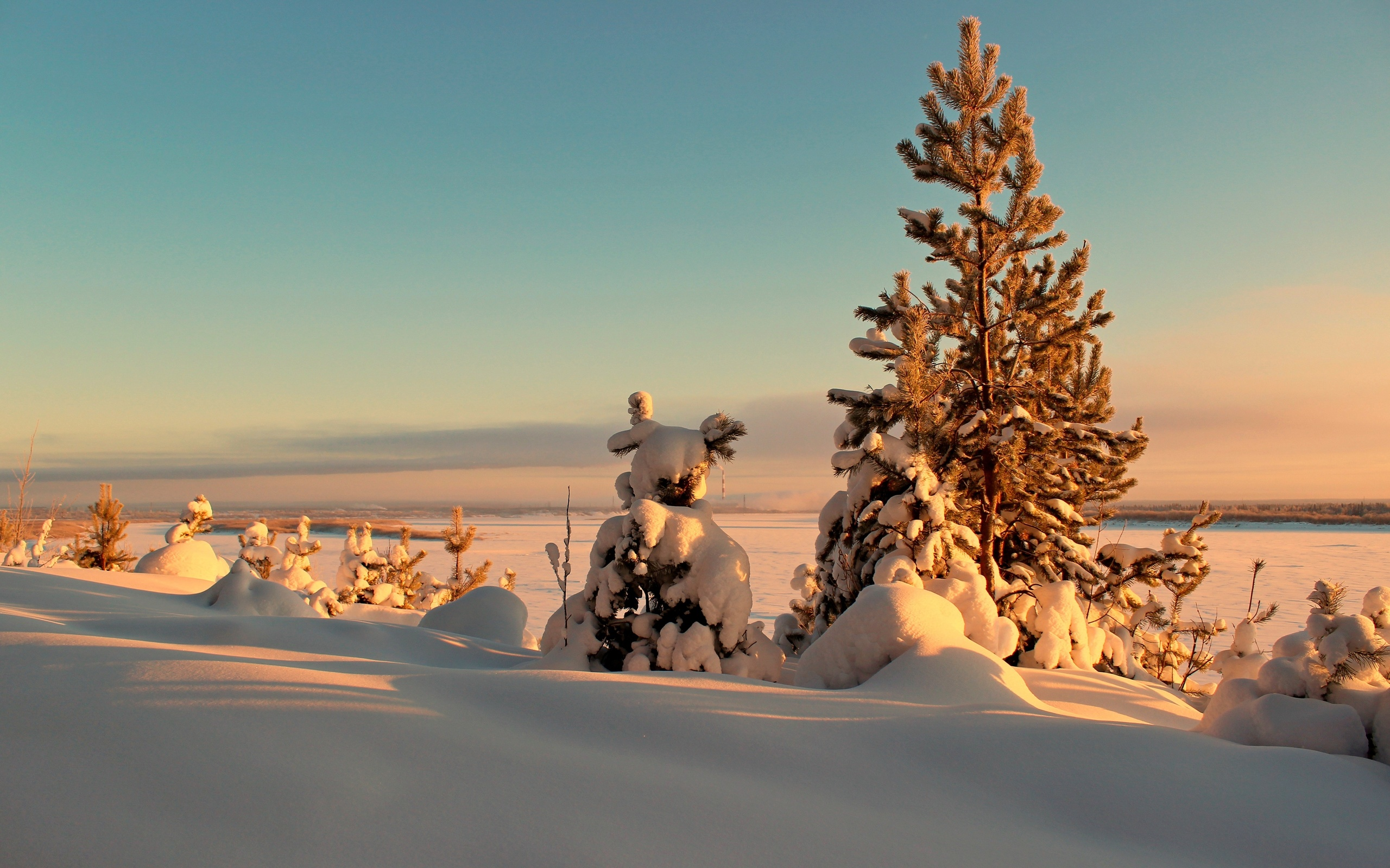 зима, природа, солнце, снег, деревья, пейзаж, закат, ели, сугробы