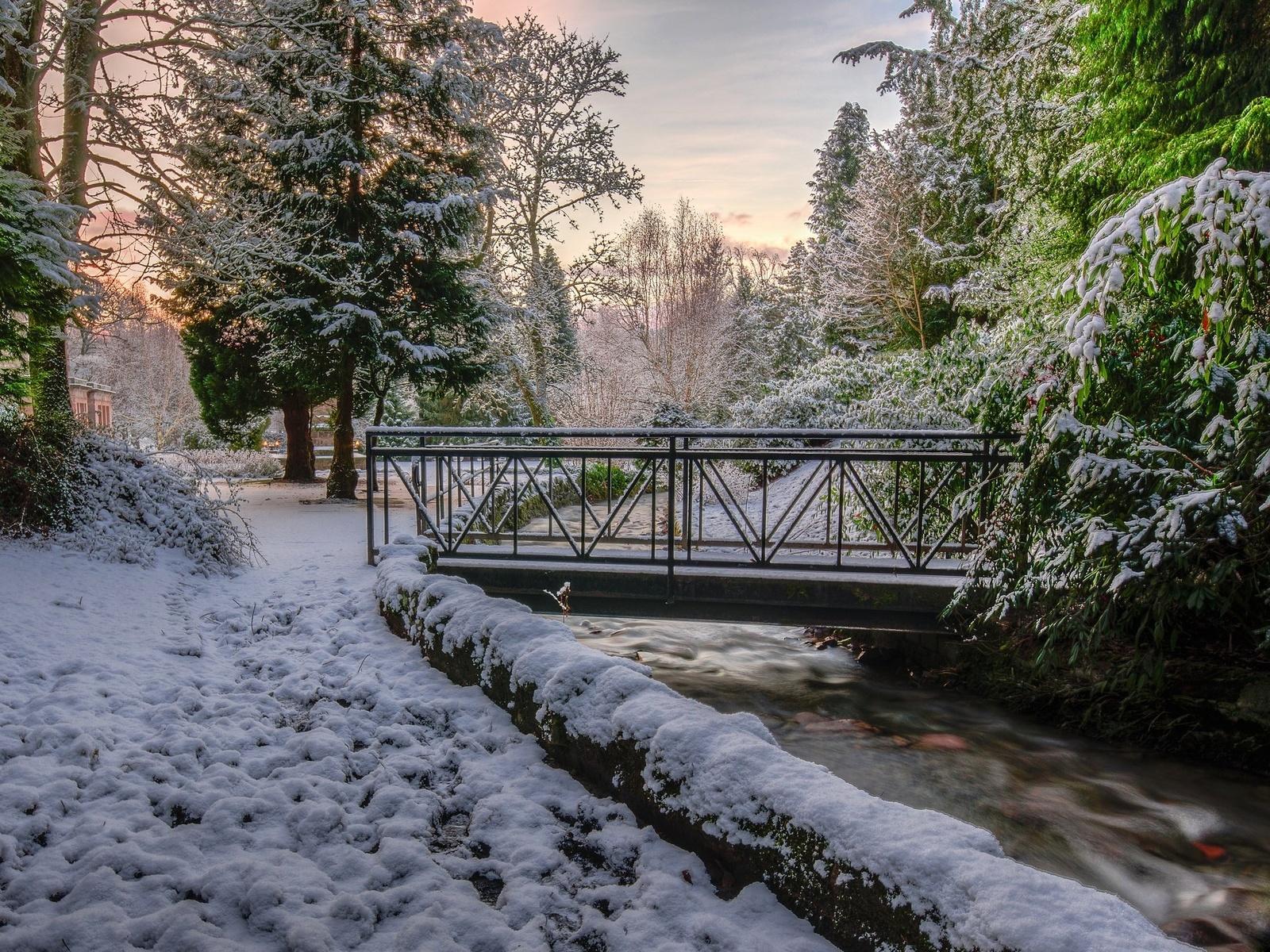 природа, зима, парк, деревья, снег, ручей, мостик