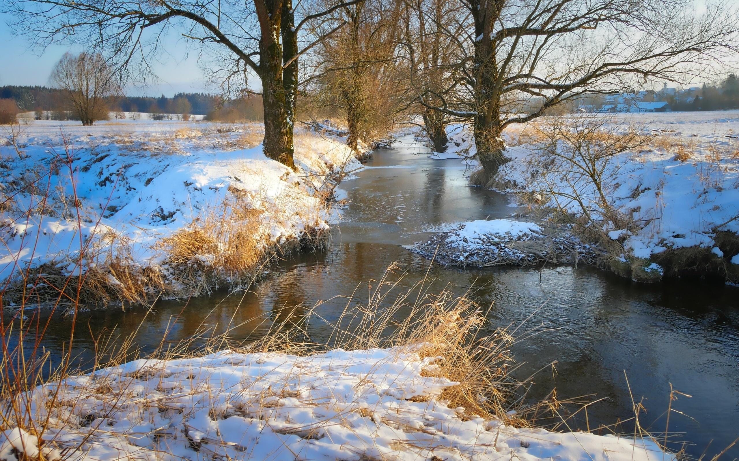 природа, пейзаж, речушка, деревья, травы, зима, снег