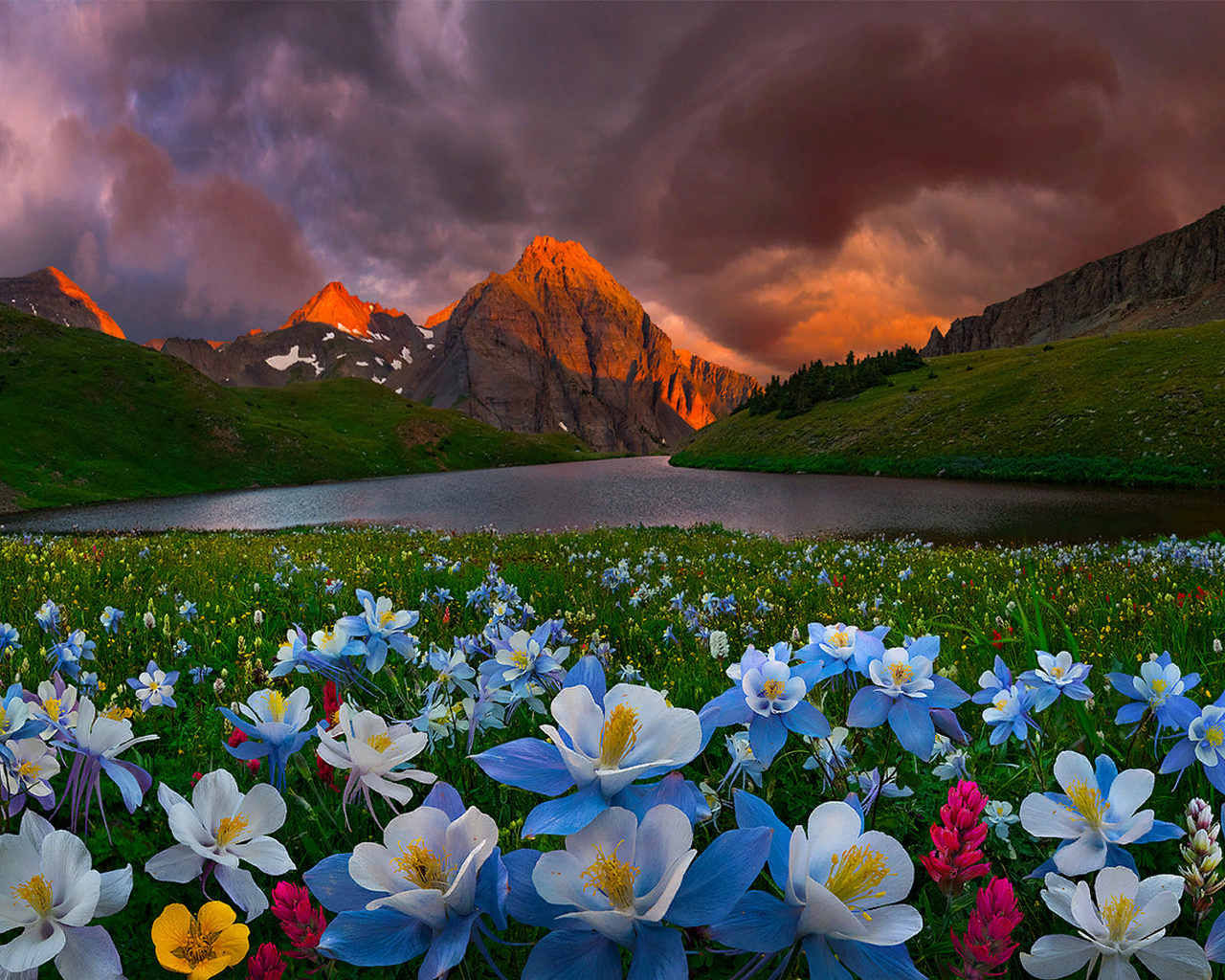 bsam, колорадо, природа, пейзаж, горы, холмы, луга, озеро, цветы, тучи, закат