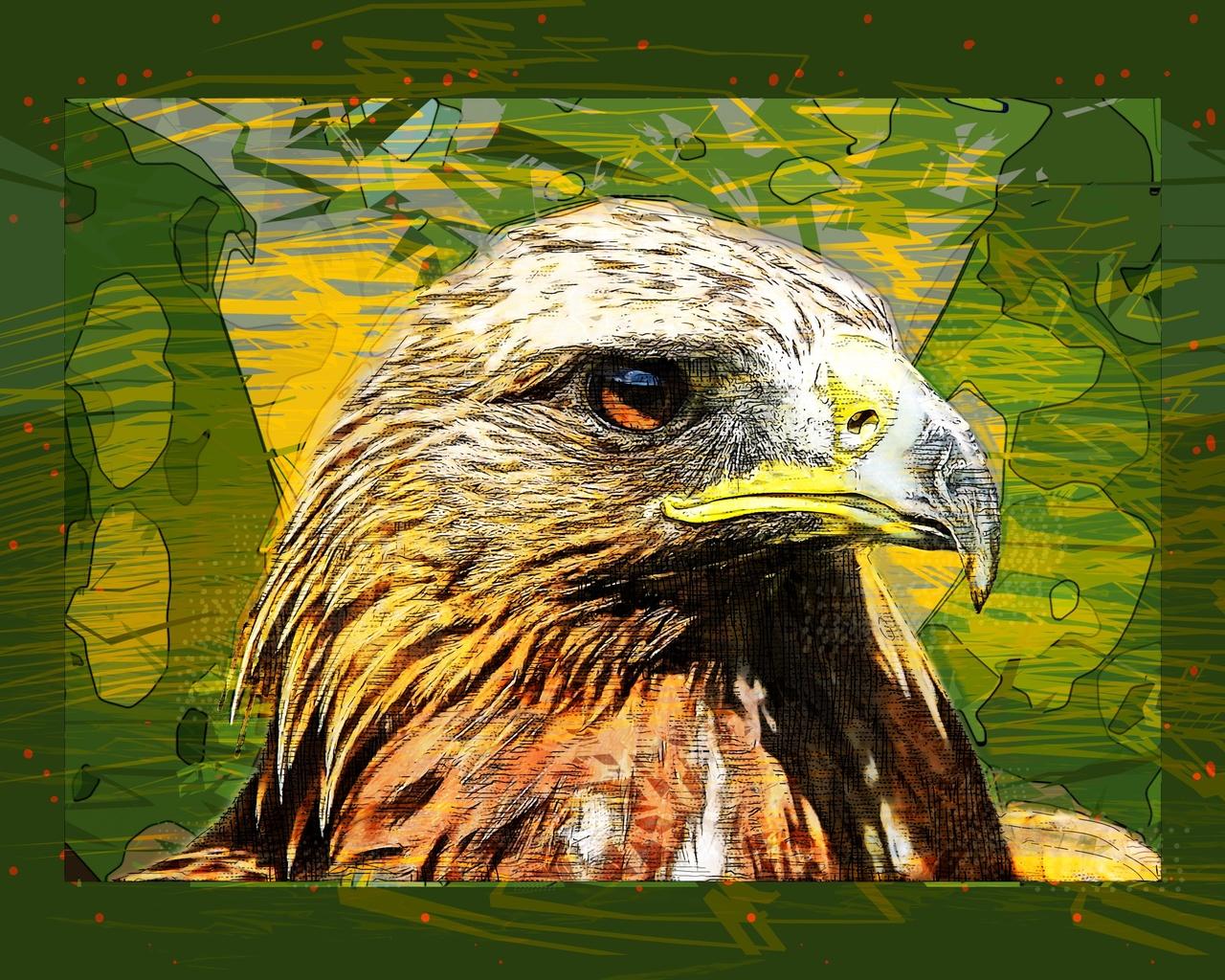 птица, хищник, 3d