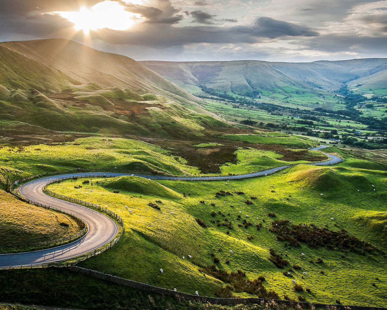 дорога, зелень, трава, солнце, холмы, пастбище