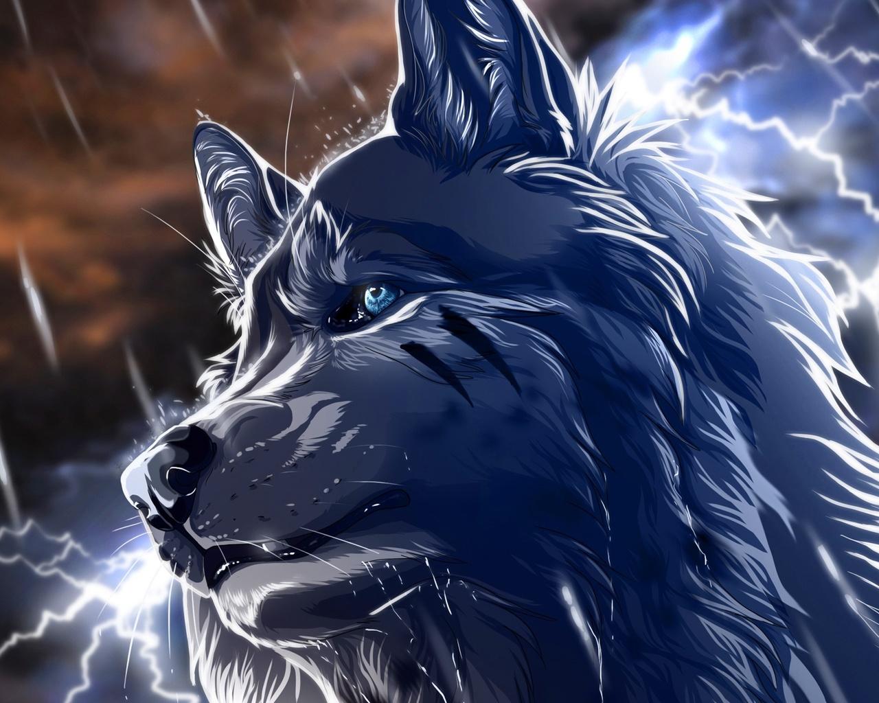волк, голубые глаза, молния