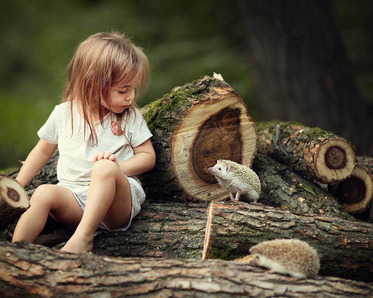 животные, природа, девочка, ребёнок, брёвна, ёжики, ежи, марианна смолина