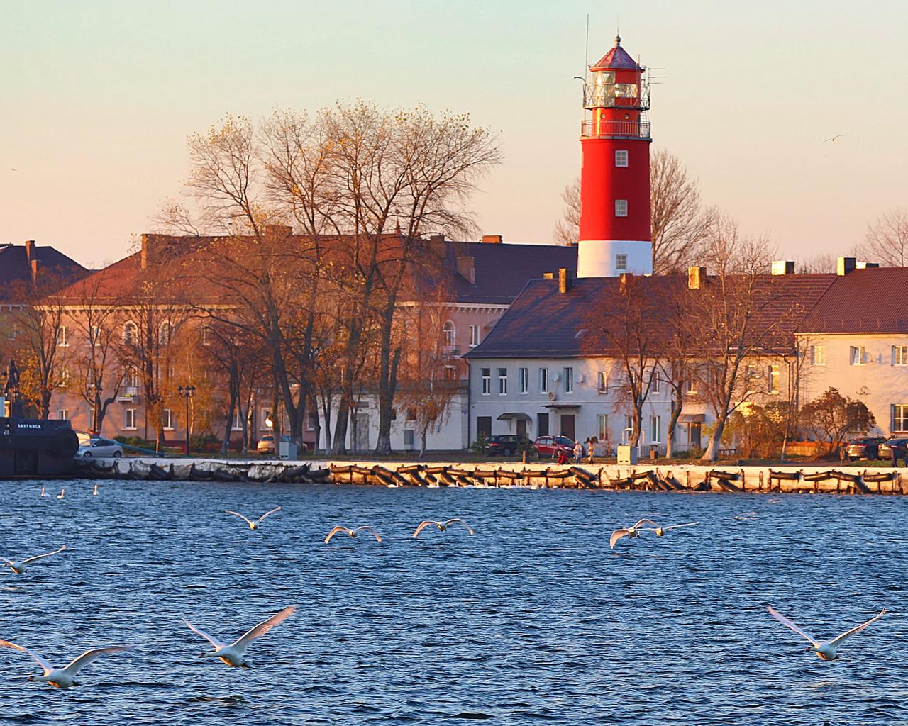 море, лебеди, маяк, люди