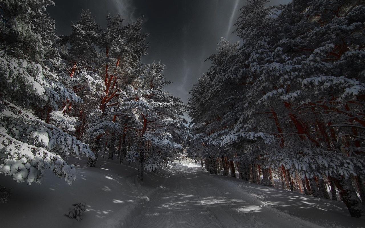 природа, зима, снег, деревья, дорога, тени