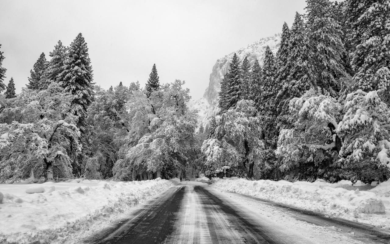 зима, снег, чб