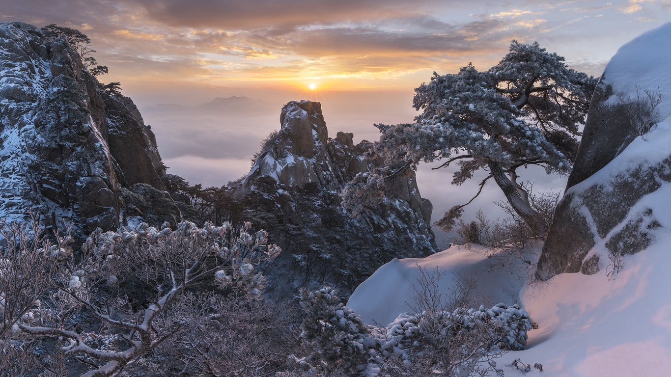 зима, снег, деревья, пейзаж, горы, природа, туман, скалы, рассвет, утро, сосны, корея, заповедник, jae youn ryu, пукхансан
