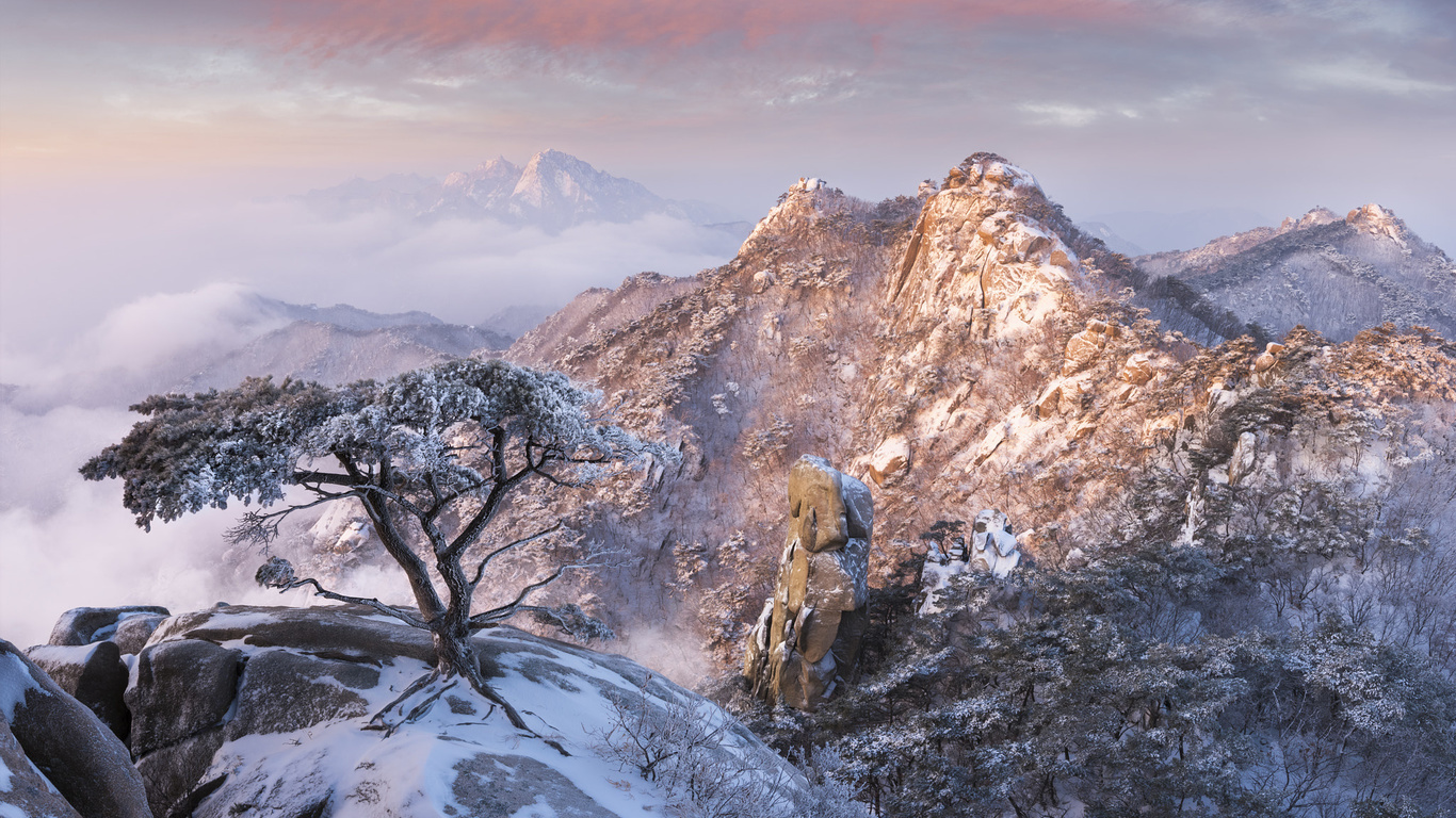 зима, облака, снег, деревья, пейзаж, горы, природа, туман, скалы, рассвет, утро, сосны, корея, заповедник, jae youn ryu, пукхансан