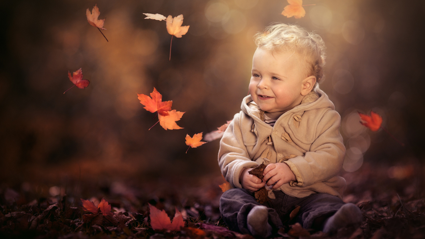 осень, листья, природа, мальчик, малыш, куртка, ребёнок, боке, штанишки, paul webb