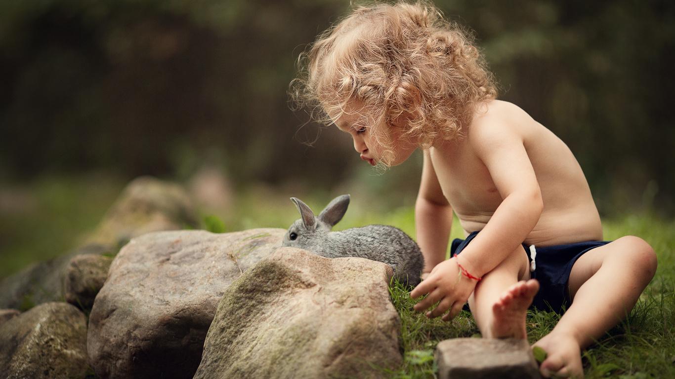 животное, лето, природа, камни, кролик, девочка, кудри, ребёнок, марианна смолина