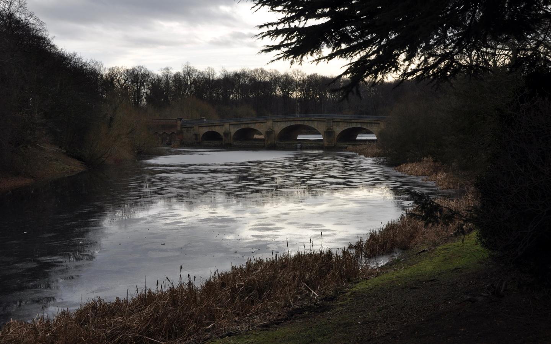 река, мост, деревья, ностел-прайори, парк, великобритания
