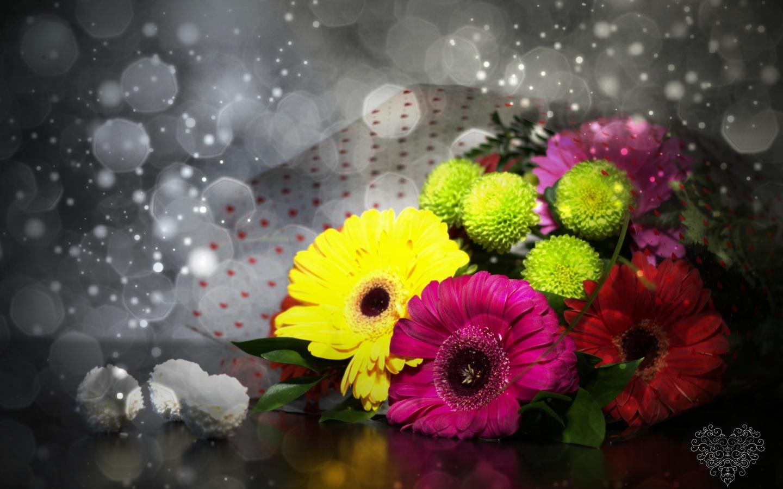букет, цветы, герберы, конфеты, раффаэлло, боке