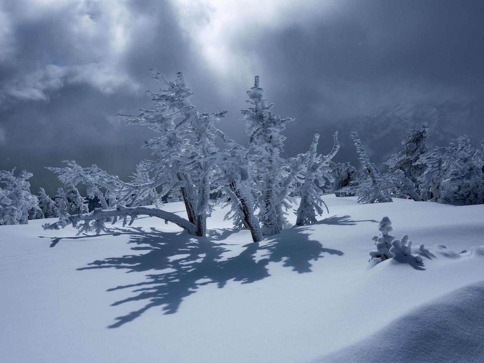 пейзаж, природа, горы, деревья, зима, снег, тени, тучи