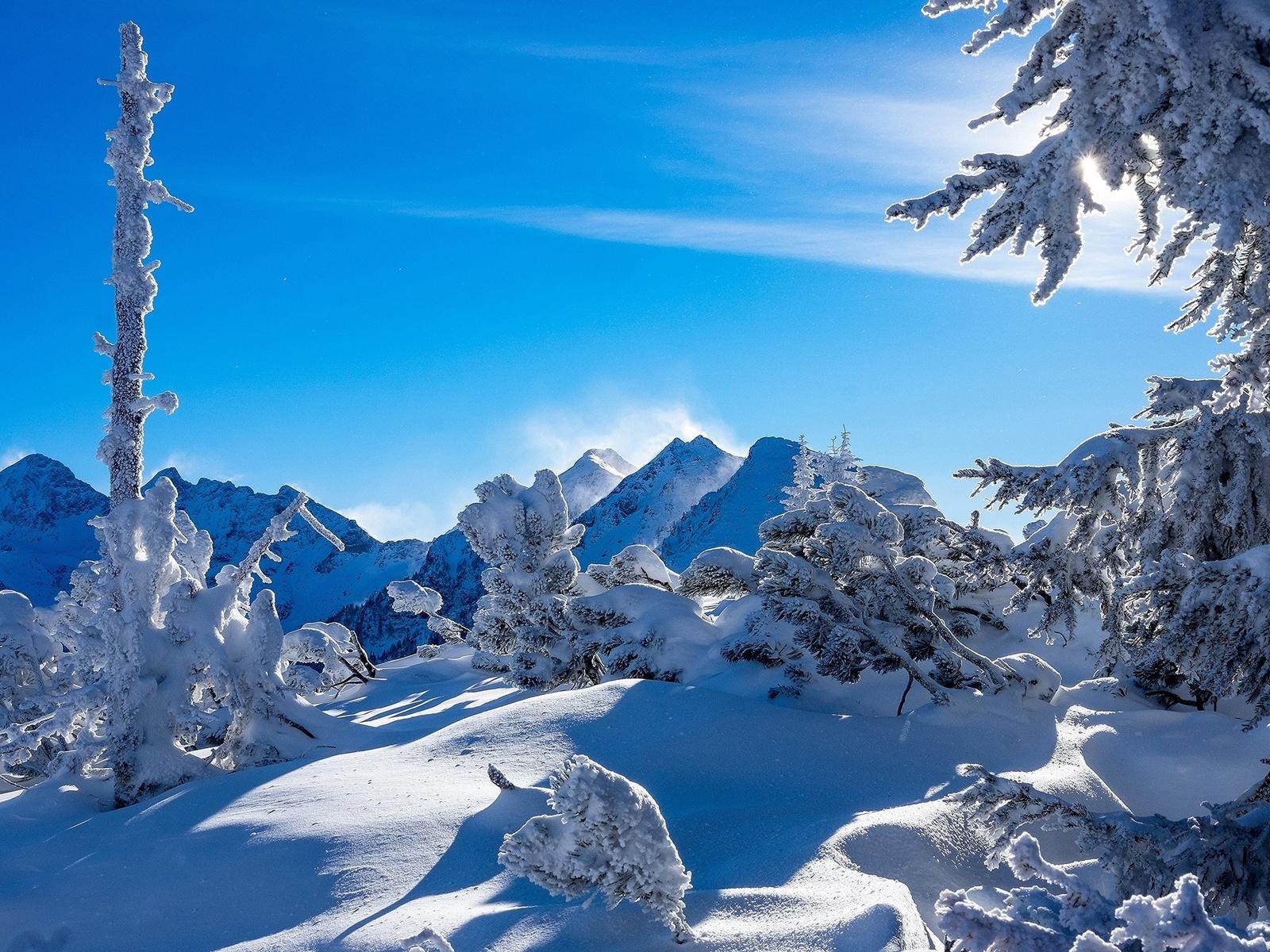 природа, пейзаж, зима, снег, деревья, ели, горы, австрия, альпы, сугробы, штирия, тени