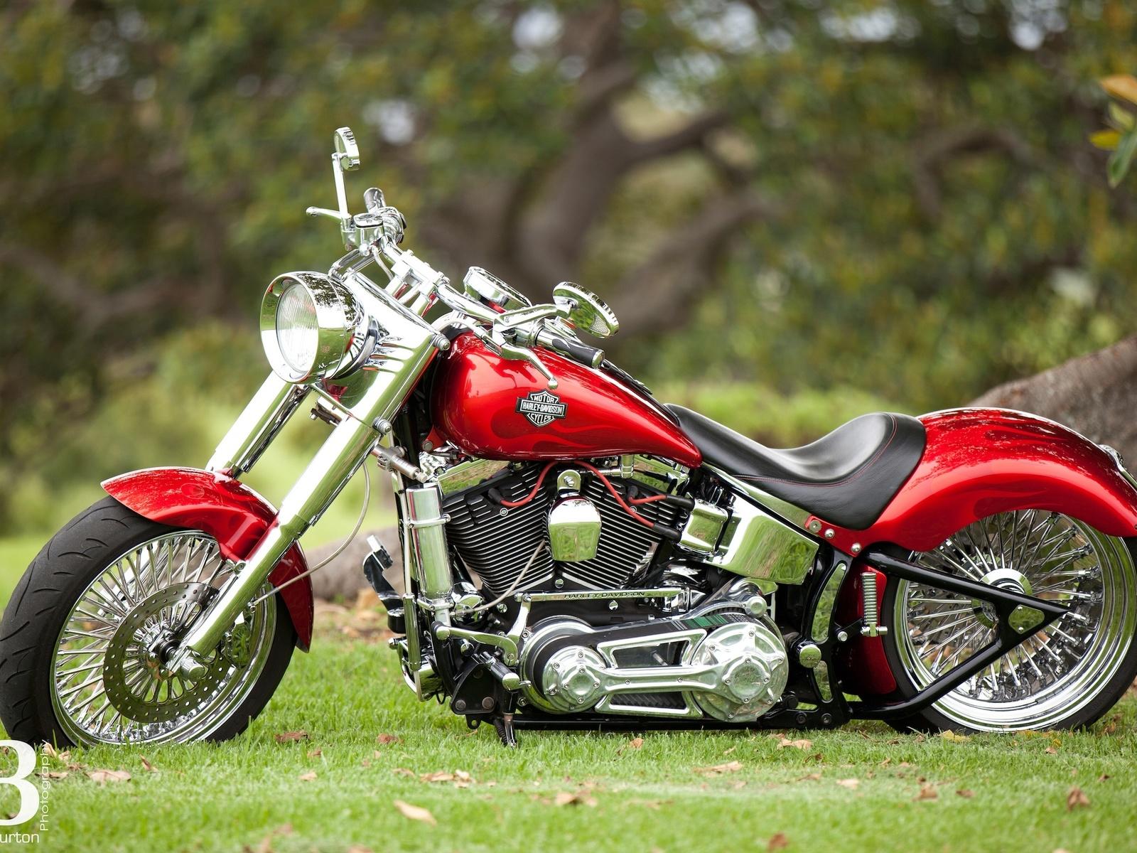 мотоцикл, harley davidson, red, хром