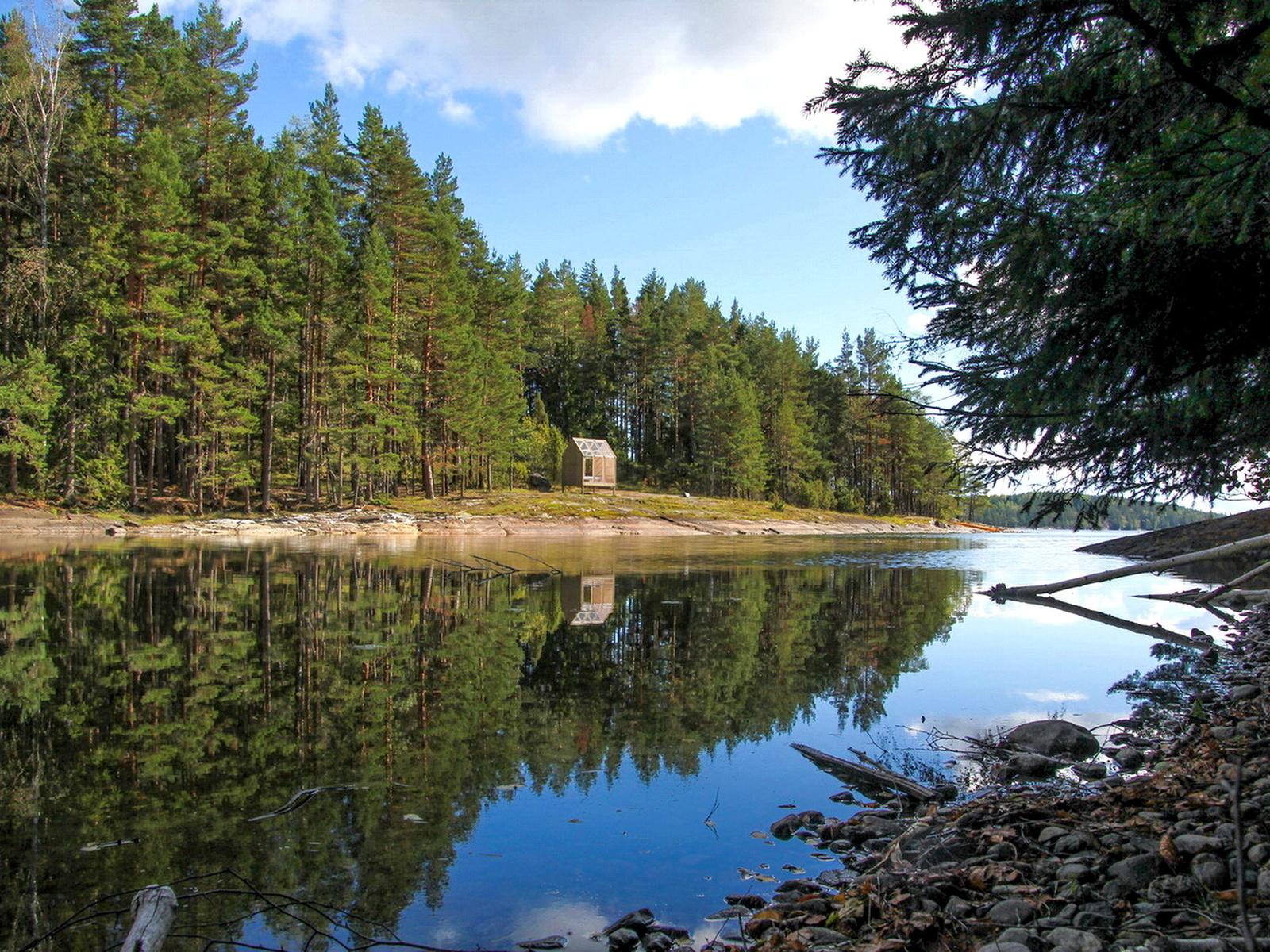 домик, лес, река, отдых