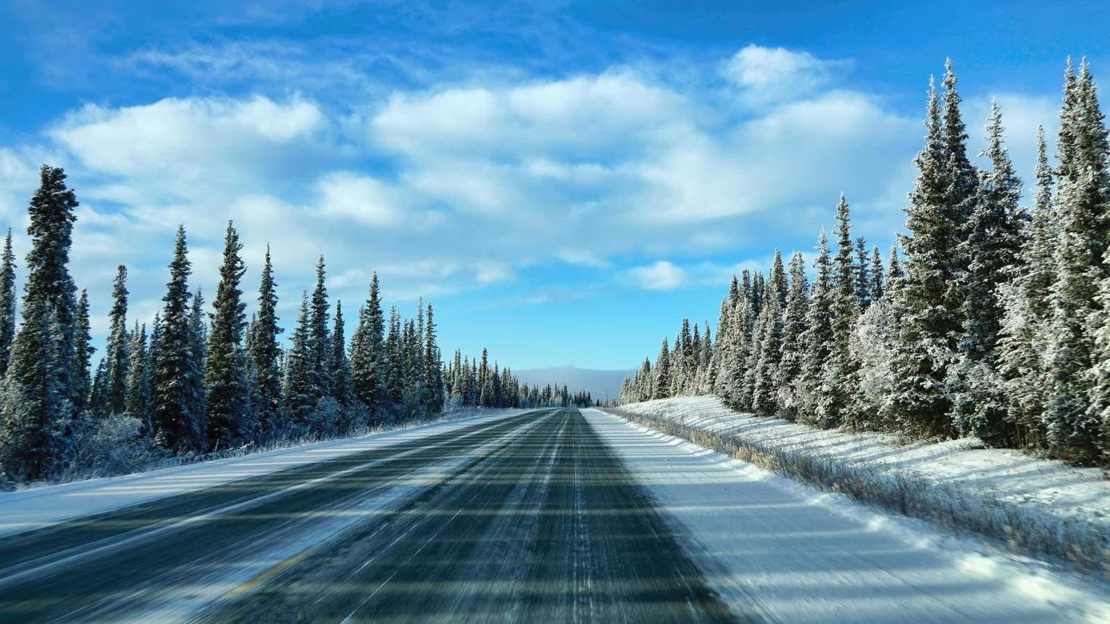аляска, зима, дорога, деревья, пейзаж