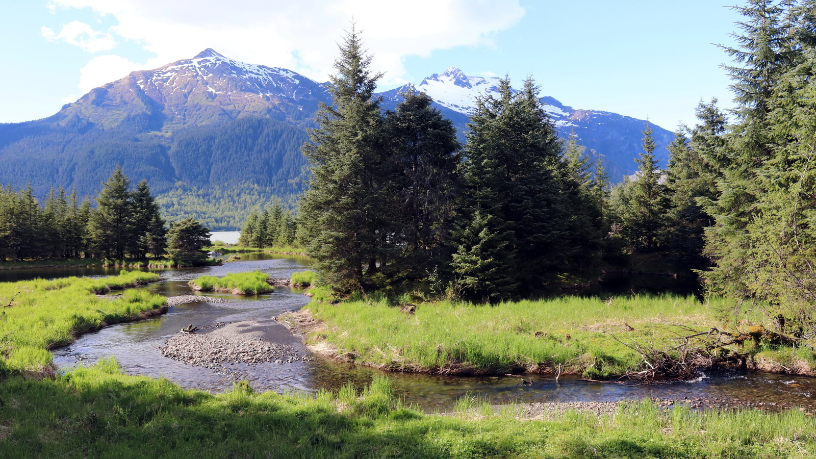 река, деревья, горы