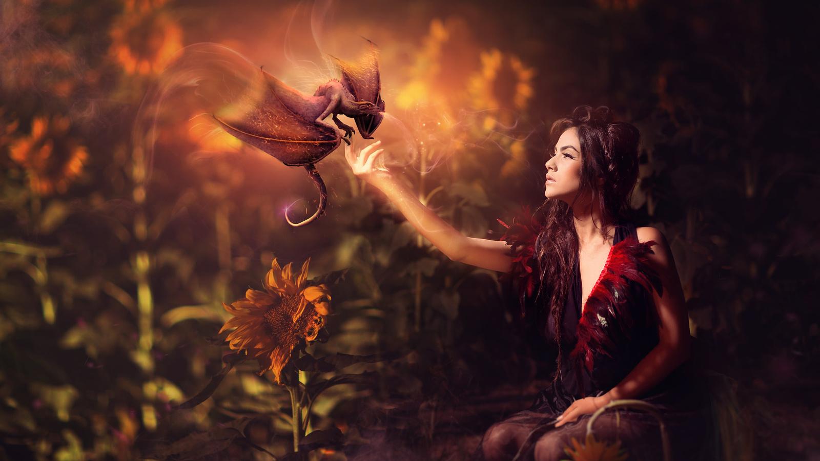 evgeny loza, девушка, брюнетка, дракон, фэнтези, подсолнухи